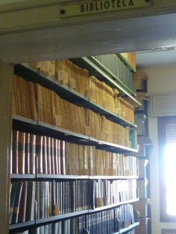 La biblioteca (R. Corcella)
