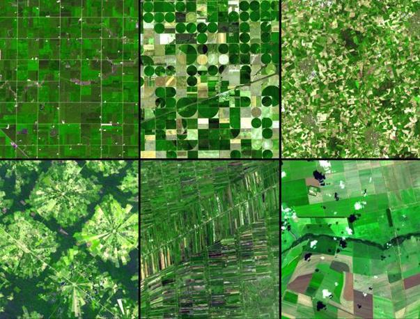 All'ottavo posto una composizione di terreni agricoli. Nella riga in alto da sinistra: Minnesota, Kansas e Germania nord-occidentale. Nella riga in basso da sinistra: Santa Cruz (Bolivia), Bangkok (Thailandia) e Brasile meridionale. Immagini riprese dal satellite Terra tramite il radiometro Aster