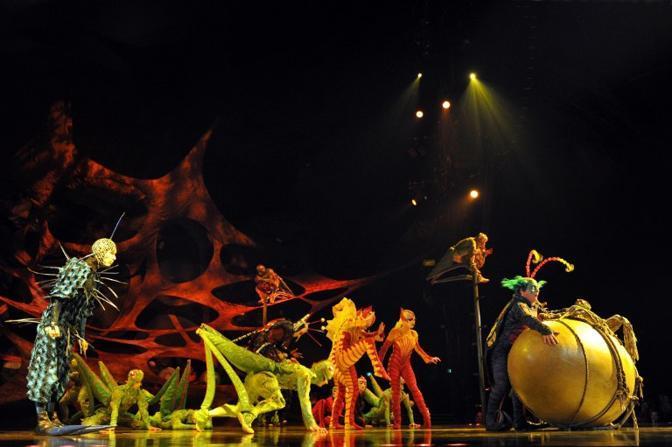 """Gli artisti del """"Circle du Soleil"""" in scena con lo spettacolo """"Ovo"""" a Melbourne (Afp)"""