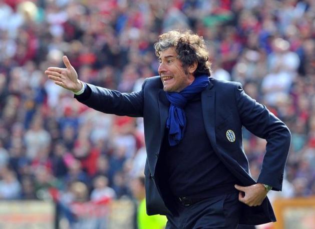Siena- Genoa 0-0: l'allenatore del Siena Alberto Malesani incita i suoi giocatori (Ansa)