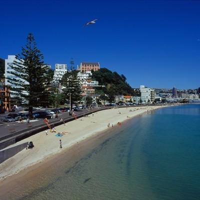 Wellington, la spiaggia in citt