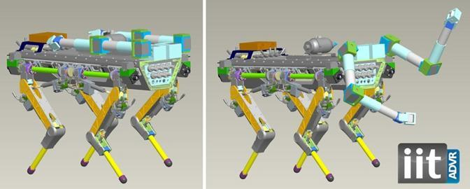 Il robot quadrupede HyQ progettato nei laboratori dell'IIT cammina e corre su 4 zampe. Pesa 70 chili ed è dotato di grande forza