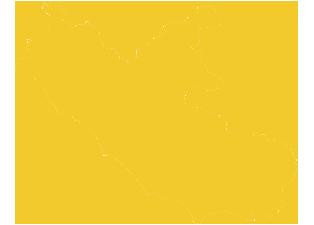 Elezioni Regionali 2018: tutti i risultati