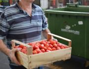 Il Banco Alimentare raccoglie il cibo scartato all'Ortomercato di Milano (Faravelli)