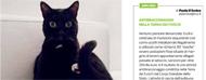 La fortuna del gatto nero