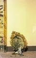 Ravenna, muratore vede foro su parete e lo stucca. Ma era un'opera d'arte