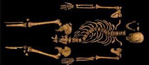 Riccardo III, il ritrovamento dei resti e le analisi