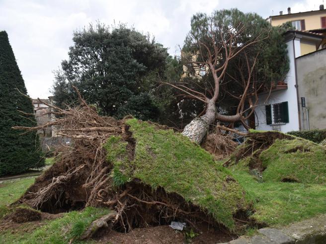 I danni provocati dalla tromba d'aria che ha colpito Pistoia, in Toscana