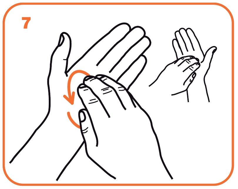Nel palmo sinistro e viceversa fonte ministero della salute oms