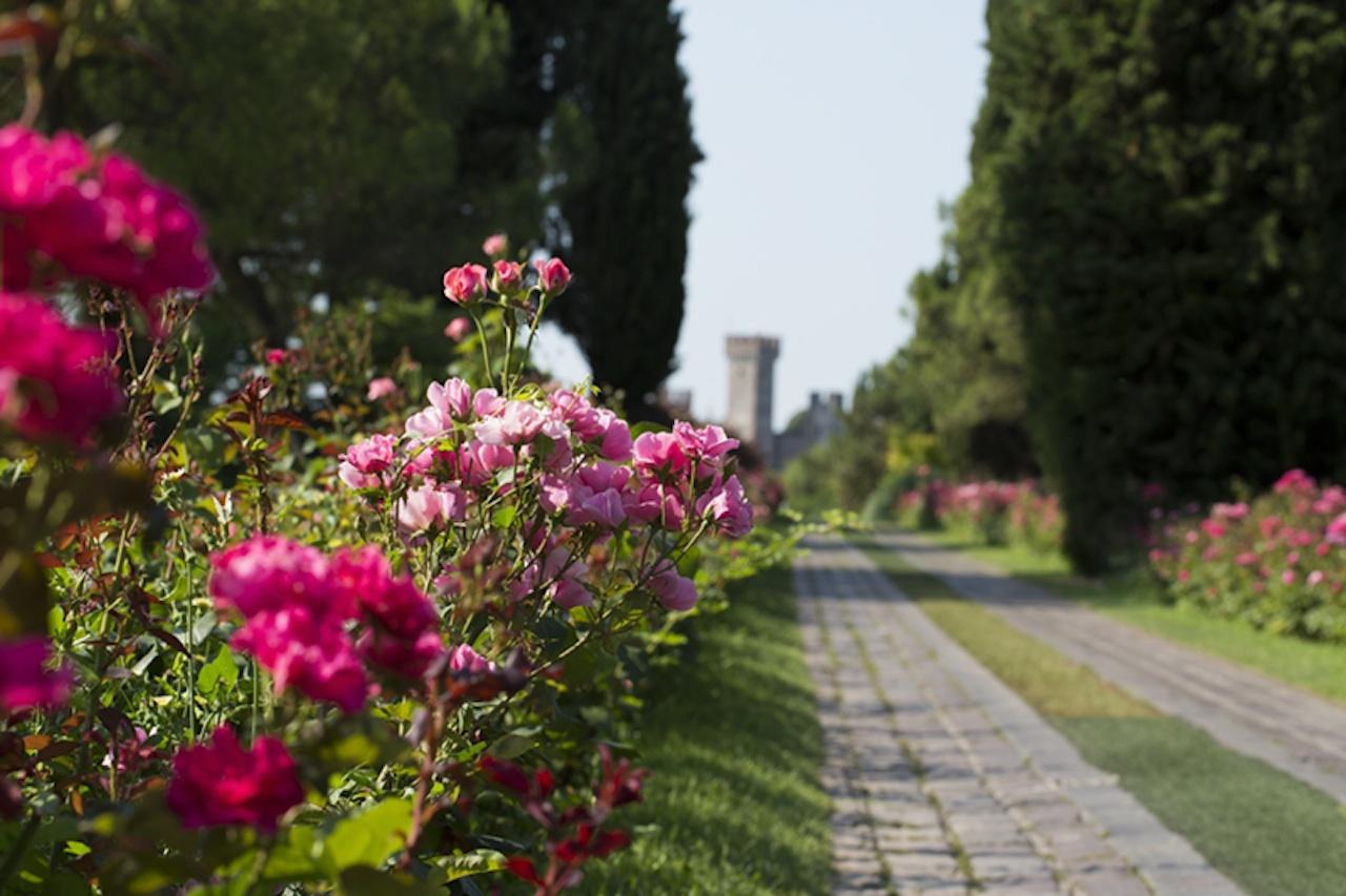 In nome della rosa 33 roseti italiani da sogno for Giardini fioriti foto