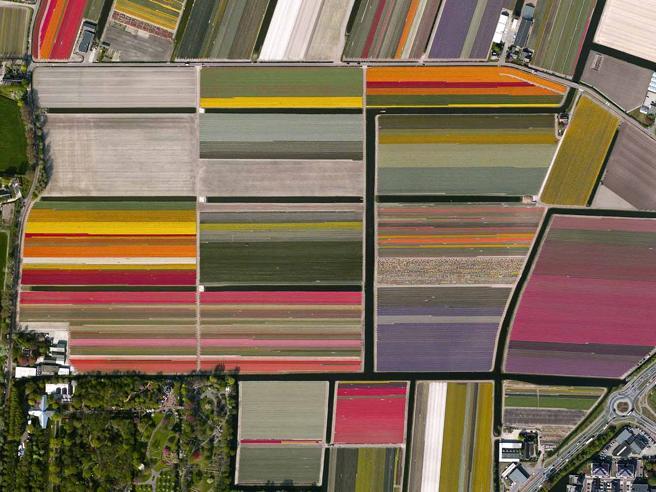 Il mondo come una tavolozza di colori: ecco la Terra vista dai satelliti