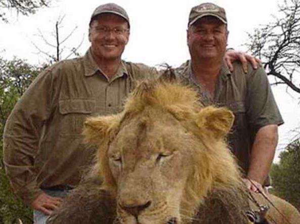 Ignorava che il leone cacciato e ucciso fosse un'icona del parco nazionale Hwange nello Zimbabwe, ma soprattutto pensava che fosse tutto legale. Così il dentista americano Walter James Palmer (nella foto con gli occhiali) ha ammesso con uno scarno comunicato di aver ucciso Cecil, leone di 13 anni simbolo del parco africano (Ansa)