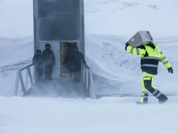Un tecnico consegna un box termico con dentro dei semi allo Svalbard Global Seed Vault (foto Matthias Heyde)
