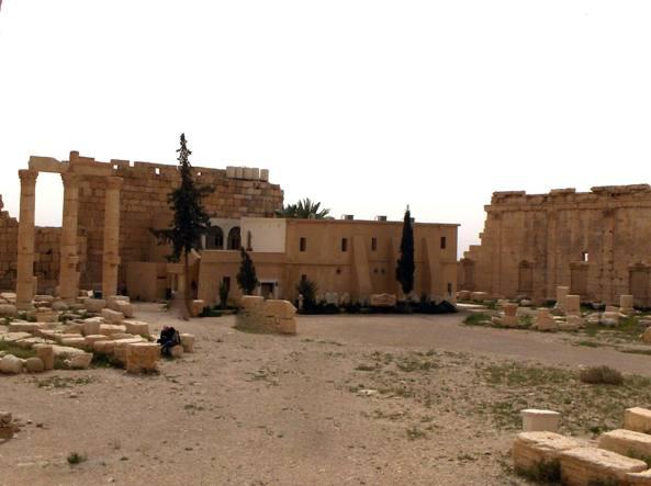 Palmira Ong Esecuzione Isis Tre Ostaggi Fatti