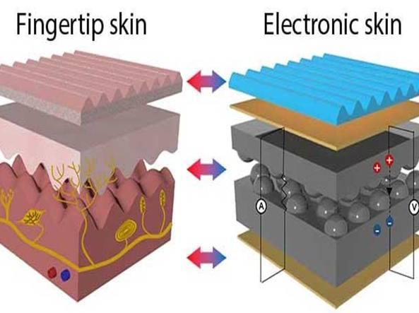 Come funziona la pelle umana (a sinistra) rispetto alla pelle elettronica