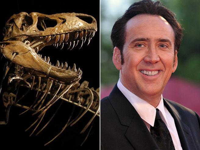 Nicholas Cage e il cranio di dinosauro: dovrà restituirlo alla Mongolia, era stato rubato