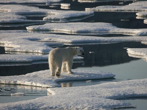 Clima: al Polo Nord temperature sopra 1°C, ben 30 oltre la norma