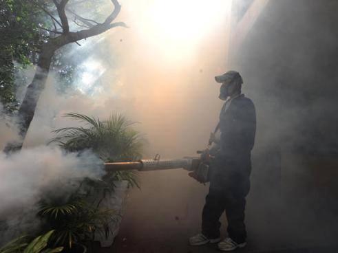 Guerra al virus Zika: DDT o zanzara OGM?