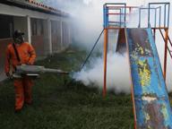 Zika: quinto caso in Italia, una  donna che proveniva dal Venezuela