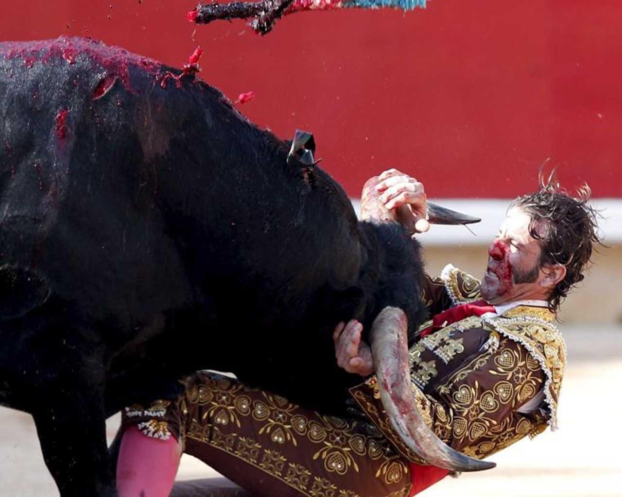 La Spagna litiga: sul governo? No, sui tori. Perché c'è ...
