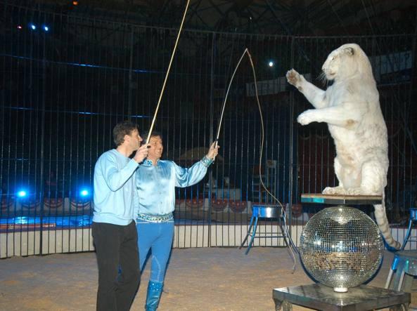 Graduale stop ai circhi con animali in Italia