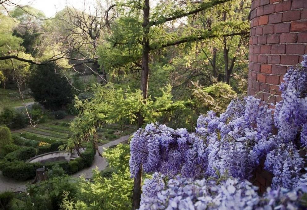 Pasquetta ecco tutti i parchi dove fare la caccia al for Giardino botanico milano