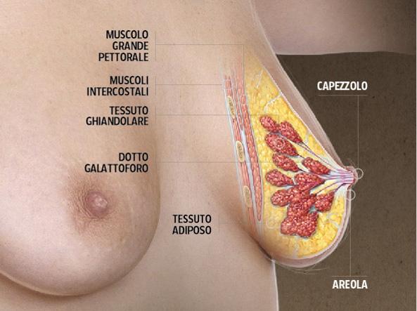 Le donne hanno negato i farmaci per il cancro al seno