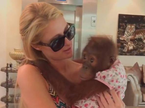 Paris Hilton con il baby-orango (Instagram)