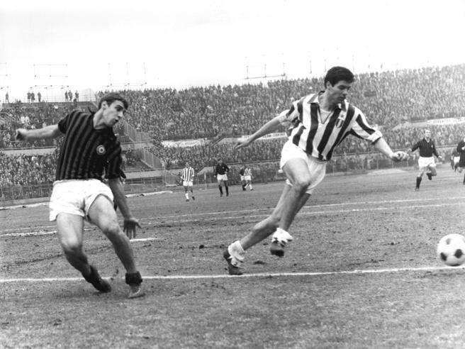 Sandro Veronesi, storie e lezioni di sport: formazione di uno scrittore