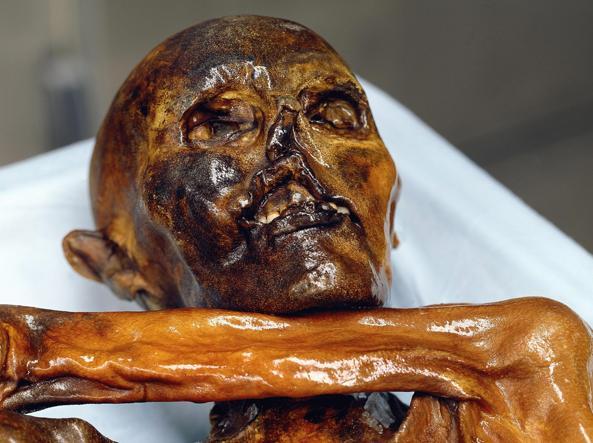 Ötzi, l'uomo del Similaun (Foto Epa)