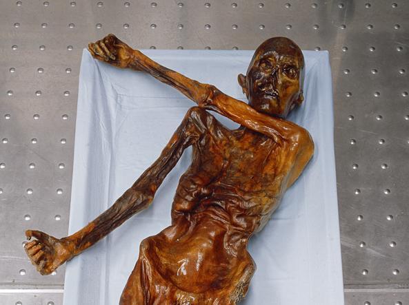 La mummia di Ötzi (Foto Reuters, courtesy Museo Archeologico  dell'Alto Adige, Bolzano)