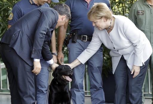 Il premier Renzi e la  cancelliera Merkel accarezzano il cane poliziotto Leo (Afp)