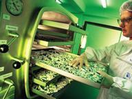 Bayer ci prova per la terza volta Offre 58 miliardi per Monsanto