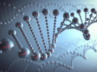 Tumori del sangue: ecco i tre geni che cambiano le sorti dei pazienti