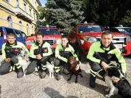 Artù, Giove, Savana & gli altriIl premio ai cani dell'emergenza