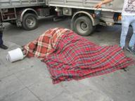 Palermo: muore in centro cavallo per il giro turistico in carrozzella
