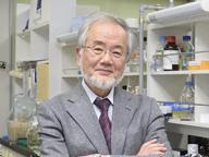 Nobel per la medicina a Ohsumi Ha scoperto l'autofagia cellulare