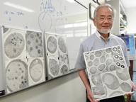 Medicina, il Nobel a Ohsumi: così le cellule riciclano i loro rifiuti