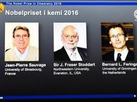 Nobel per la Chimica a scienziati Sauvage, Stoddart e Feringa per la 'più piccola macchina molecolare'