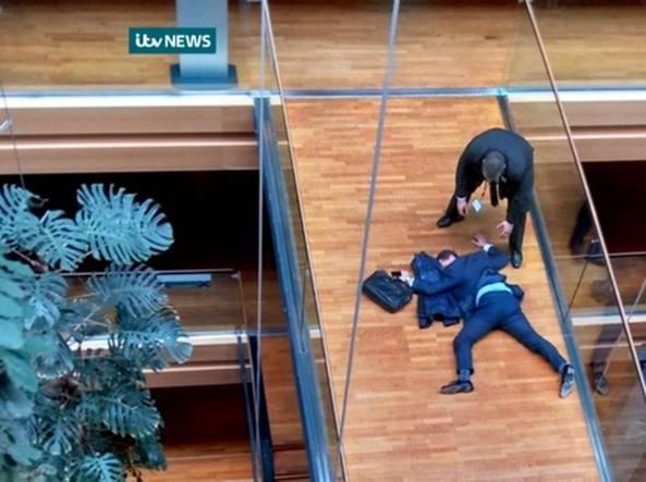 Rissa al Parlamento Europeo a Strasburgo, deputato Woolfe ricoverato