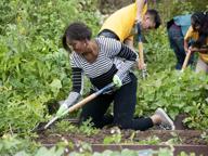 Michelle Obama: «Il mio orto in eredità al prossimo presidente»