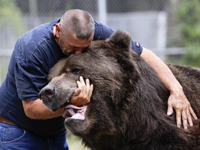 Jim e Jimbo, la storia di una straordinaria amicizia tra uomo e orso