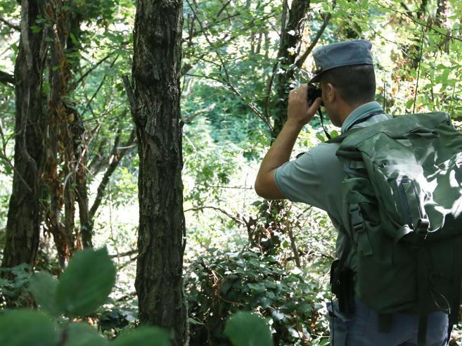 L'esercito dei forestali calabresial lavoro con paletta e secchiello
