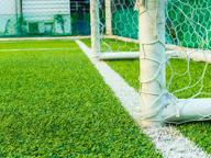I campi di calcio in erba sintetica? Anche questi sono focolai di batteri