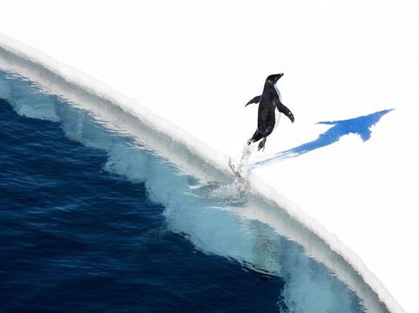 Antartide: via libera alla riserva marina più grande del mondo