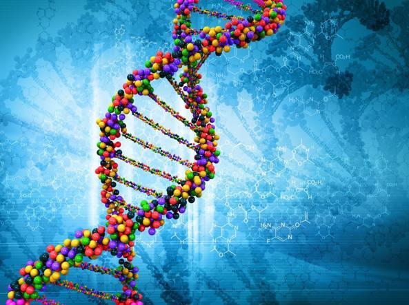 Leucemia mieloide acuta: individuata sequenza di DNA