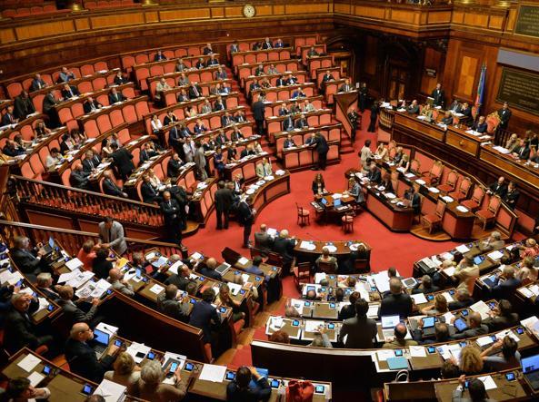 Senato (Ansa)