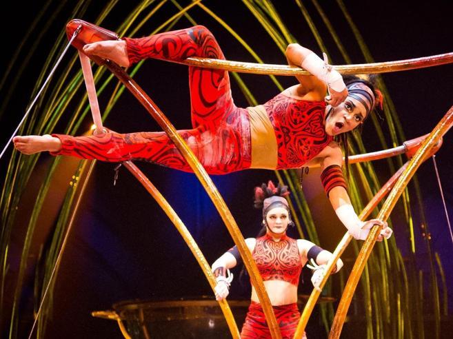 Le star del Cirque du Soleil: «9 ore di allenamento al giorno»