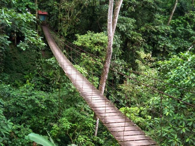 Colombia, cede ponte sospeso:undici vittimetra i turisti