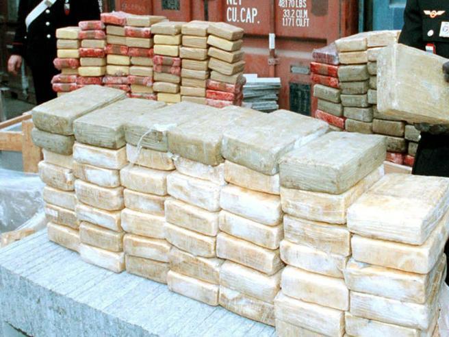 'Ndrangheta, cocaina da Bogotà  alla Calabria «Nascosta tra pesce surgelato e verdura»